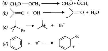NCERT Solutions for Class 11th Chemistry Chapter 12 Organic Chemistry Some Basic Principles and Techniques Q16