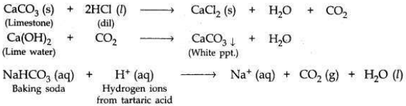Solved CBSE Sample Papers for Class 10 Science Set 6 1.5