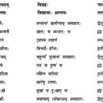 Abhyasvan Bhav Sanskrit Class 9 Solutions Chapter 9 समासाः 1